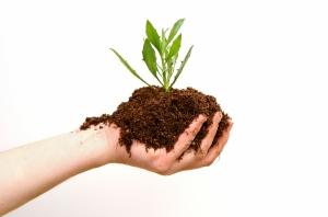 iStock_000001472480Medium Green Solutions Slide